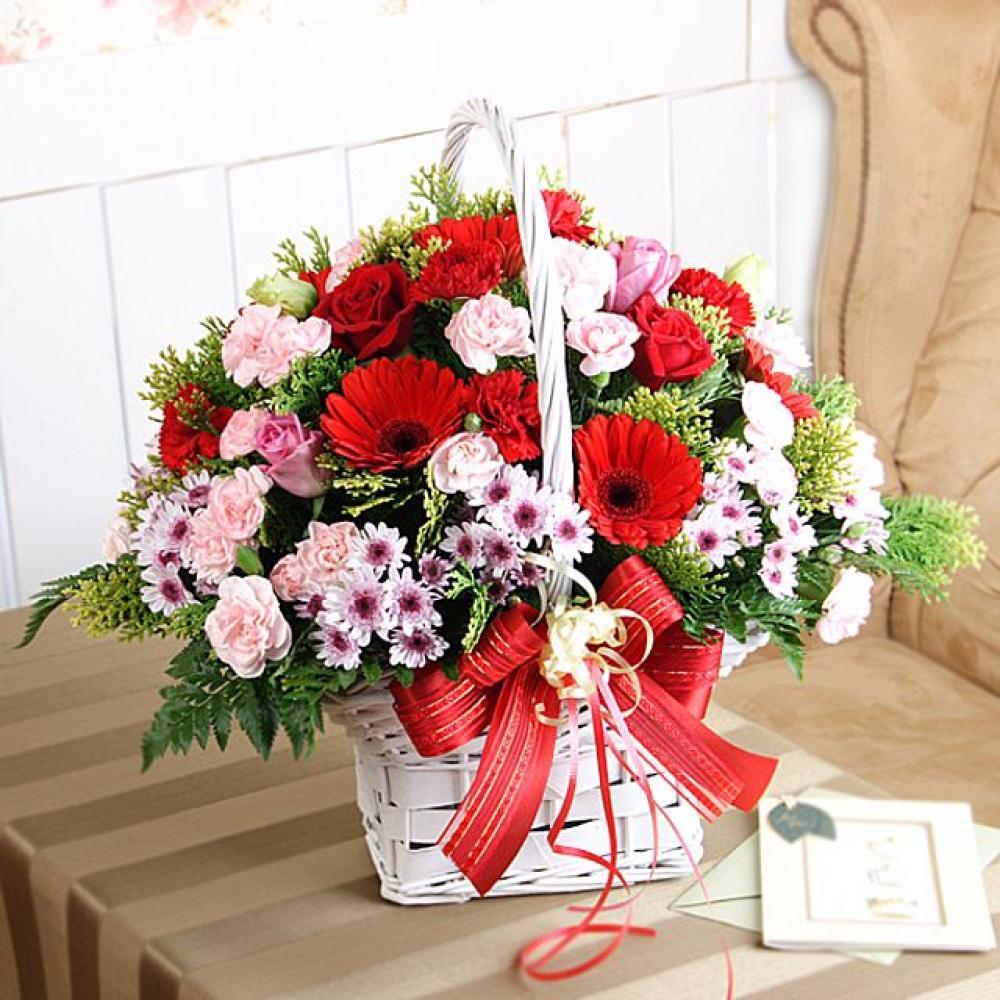 효도의 꽃바구니 (대급) 카네이션 꽃배달