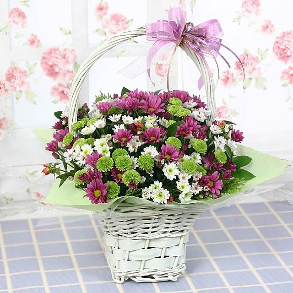 난괜찮아 꽃바구니 (중급) 기념일 꽃배달 꽃선물